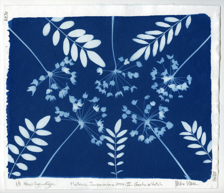 Five cyanotypes to celebrate the olympic torch coming to st andrews