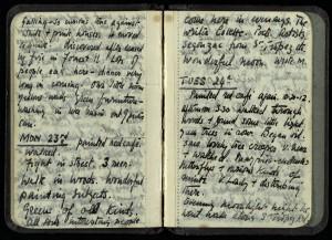 wbg-notebook