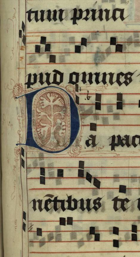 Pen decorated initial 'D' with tree from p. 351 of a 15th century Gradual (St Andrews msM2148.G7)