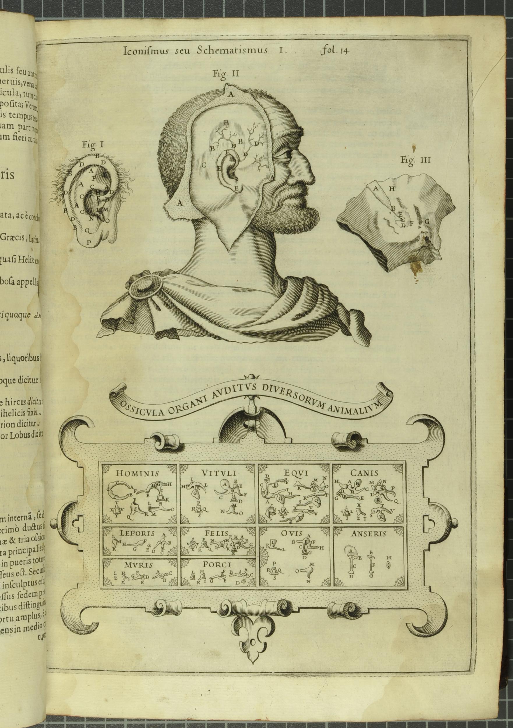 52 Weeks of Inspiring Illustrations, Week 42: Athanasius Kircher\'s ...