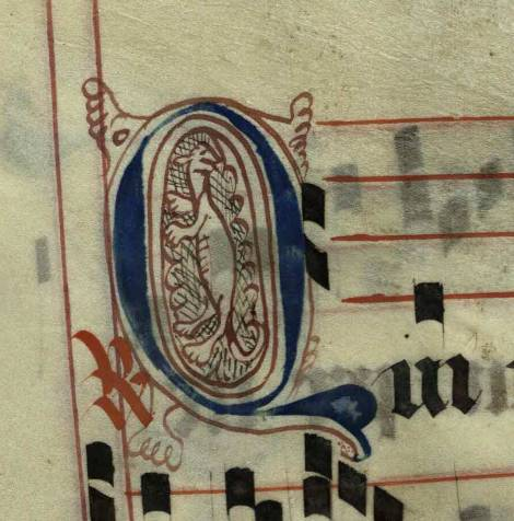 Pen decorated initial 'Q' with unidentified animal from p. 64 of a 15th century Gradual (St Andrews msM2148.G7)