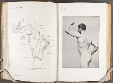 """Three-quarters back view of male figure with arm uplifted,"" page 106"