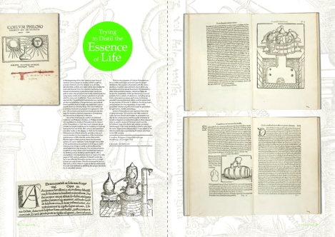 issue 2 ulstadius spread
