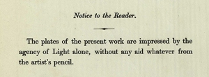Notice to Reader from the Pencil of Nature