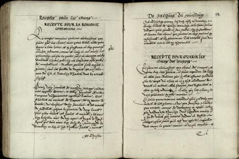 Pic 4 Folios 11v-12r