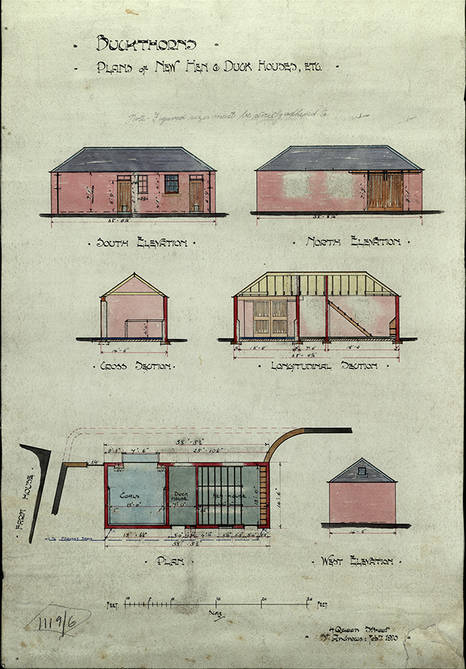 52 weeks of historical how to s week 22 an experiment in for Domestic duck house plans