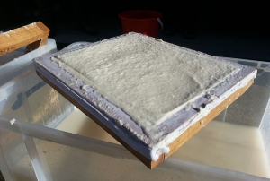 The pulp on our mould, after the deckle had been removed, and ready to be turned out on to a tea towel.
