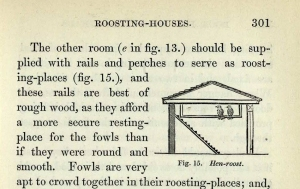 Roosting house Loudon