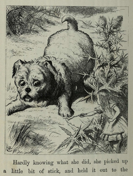 An enormous puppy was looking down at her p 55 -Alice's adventures in wonderland by Lewis Carroll; with illustrations by John Tenniel Chi PR4611.A6E70