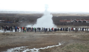 Geysers 2014. Photo, writer's own.