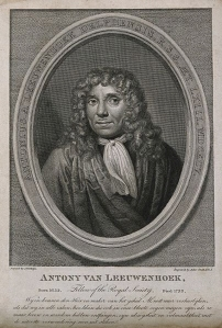 Portrait of Antony van Leeuwenhoek. http://wellcomelibrary.org (record number 5493i).
