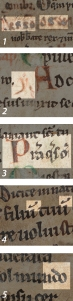 palaeographical details