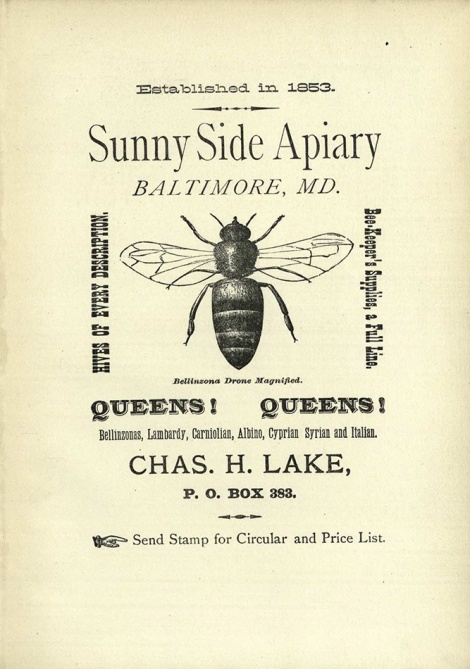 Advertisement for the Sunny Side Apiary (BevSF523.C6 )