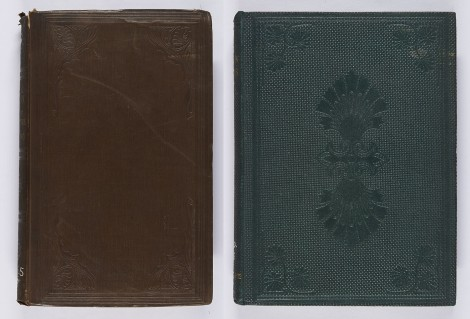 These two bindings combine a frame with cornerpieces, the second also having a blind centrepiece. George Wilkinson, Practical geology and ancient architecture of Ireland (London: John Murray, 1845), r QE265.W5 ; James Russell Lowell, The Biglow papers (London: Trübner & Co., 1859), r PS2330.L7B5.