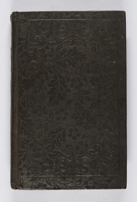 The blind border on this binding almost detracts from the gorgeous floral pattern of the ribbon-embossed cloth. Robert Mudie, The sea (London: Thomas Ward & Co., 1835), s GC21.M8.