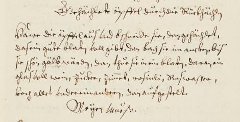 The recipe as written in the manuscript