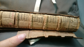 This book had printed fragments all the way along the spine in layers that peeled back (if you were careful!)