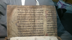 This fragment is in Latin, and shows a large Gothic script with red capitals. (TypGS.B48XB)