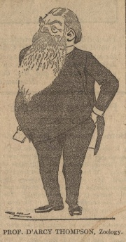 Caricature of D'Arcy Wentworth Thompson (ms46331/3)