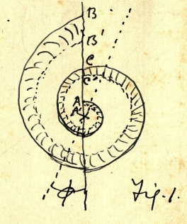 Peddie's sketch of a logarithmic spiral