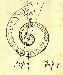 Peddie's sketch of a logarithmic spiral
